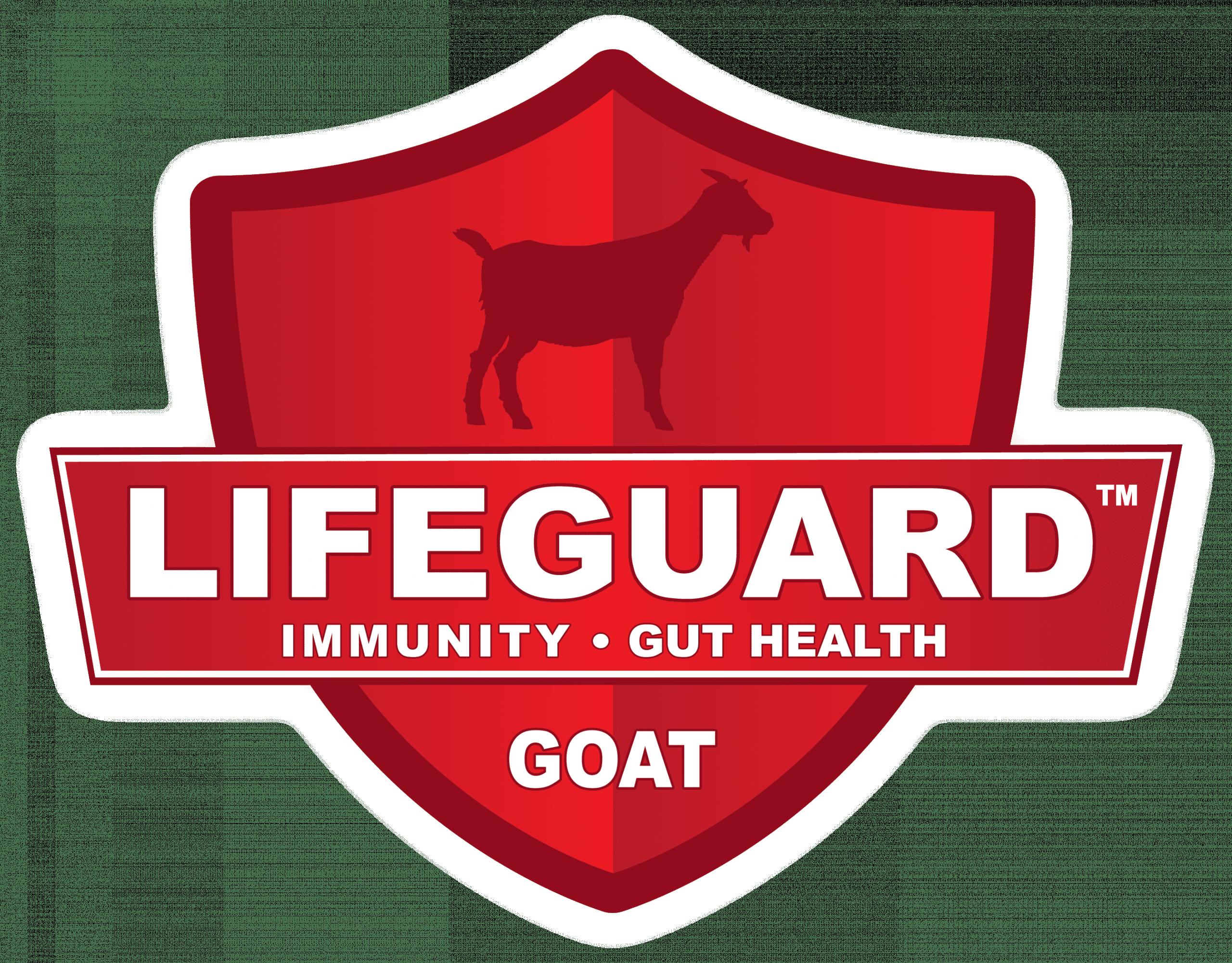 Goat Lifeguard