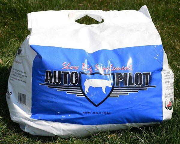 Auto Pilot bag