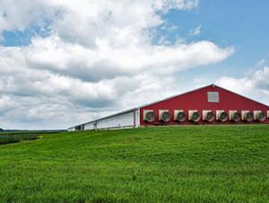 Kalmbach website contract barn